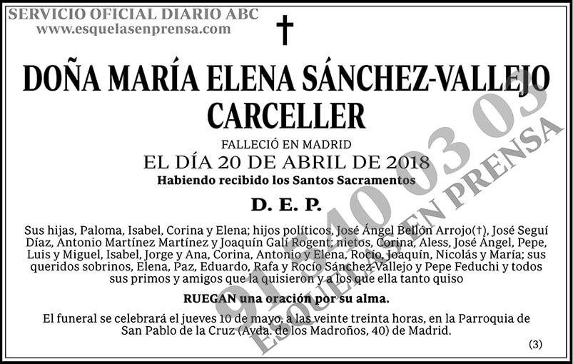 María Elena Sánchez-Vallejo Carceller